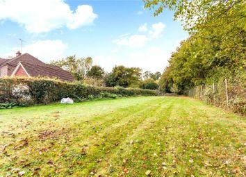 Thumbnail Land for sale in Ridgley Road, Chiddingfold, Godalming, Surrey