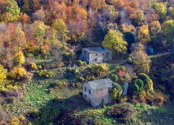 Thumbnail 5 bed farmhouse for sale in Vivo D'orcia, Castiglione D'orcia, Siena, Tuscany, Italy