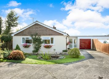 Thumbnail 3 bed bungalow for sale in ., Stour Row, Shaftesbury