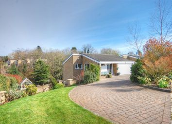Thumbnail 4 bed detached house for sale in Rectory Dene, Morpeth