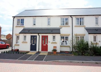 Thumbnail 2 bed terraced house for sale in Saffin Drive, Taunton