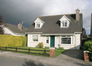 Thumbnail 4 bed bungalow for sale in 23 The Downs, Pollerton, Carlow Town, Carlow
