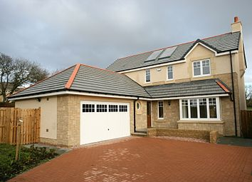 Thumbnail 4 bed detached house to rent in Burnland Crescent, Westhill, Aberdeenshire