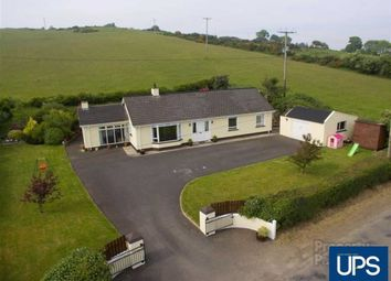 Thumbnail 3 bed detached bungalow for sale in Guiness Road, Ballynahinch