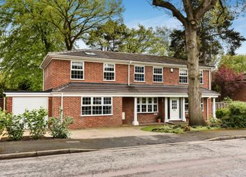 Thumbnail 5 bed detached house to rent in Russet Gardens, Camberley