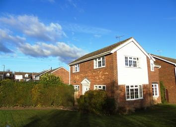 Thumbnail 4 bedroom detached house for sale in Papeley Meadow, Barrow, Bury St. Edmunds