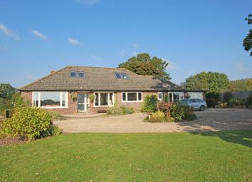 Thumbnail 4 bed property for sale in Scallows Lane, West Wellow, Romsey