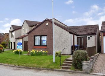 Thumbnail 2 bedroom bungalow to rent in Crombie Close, Skene, Westhill
