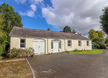 Thumbnail 3 bed semi-detached bungalow to rent in Swarraton, Alresford