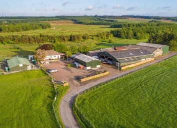 Thumbnail Farm for sale in West Calder, West Lothian