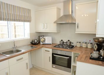 Thumbnail 3 bed semi-detached house for sale in The Fergus, Cargo Fleet Lane, Middlesbrough