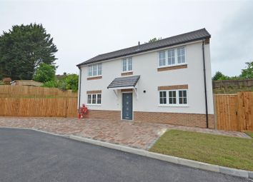 Thumbnail 3 bed detached house for sale in Colin Road, Luton