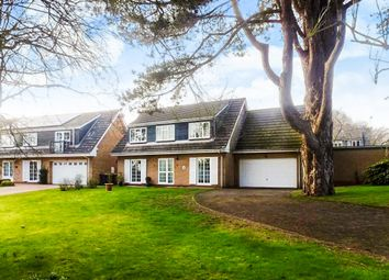 Thumbnail 5 bed detached house for sale in Dolben Close, Finedon, Wellingborough