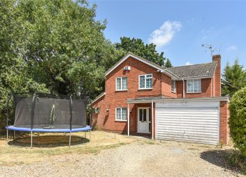 Thumbnail 4 bed detached house to rent in Greenacres Avenue, Winnersh, Wokingham, Berkshire