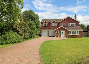 Thumbnail 5 bed detached house to rent in Higham Lane, Tonbridge