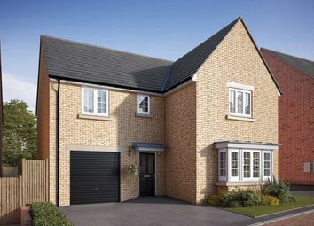 "Thumbnail 4 bedroom detached house for sale in ""The Grainger"" at Uffington Road, Barnack, Stamford"