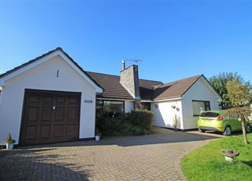 Thumbnail 5 bed detached bungalow for sale in Derril, Pyworthy, Holsworthy