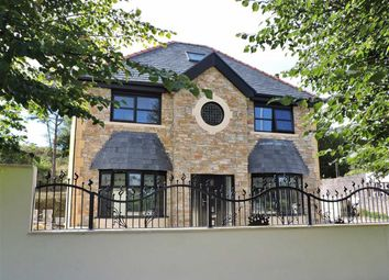 Thumbnail 6 bed detached house for sale in Peniel Green Road, Peniel Green, Swansea