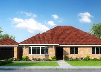 Thumbnail 3 bed bungalow for sale in Cherry Blossom, Cherry Tree Avenue, Clacton-On-Sea