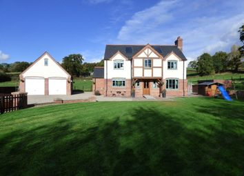 Thumbnail 3 bed detached house for sale in Pontrobert, Meifod