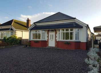 Thumbnail 4 bed bungalow for sale in Combe Street Lane, Yeovil