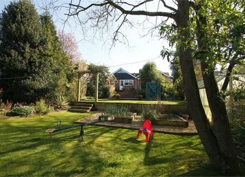 Thumbnail 3 bed detached bungalow for sale in Chandos Drive, Martlesham, Woodbridge, Suffolk