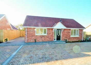Thumbnail 2 bed bungalow for sale in Old Kirton Road, Trimley St. Martin, Felixstowe