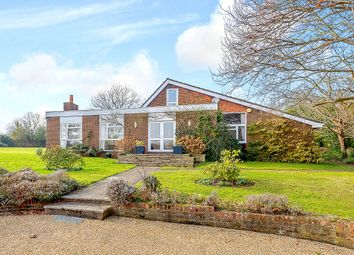 Thumbnail 5 bed detached bungalow for sale in Horsham Road, Grafham, Bramley, Guildford