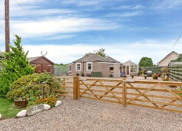 Thumbnail 3 bed detached house for sale in Holding, Woodside, Burrelton