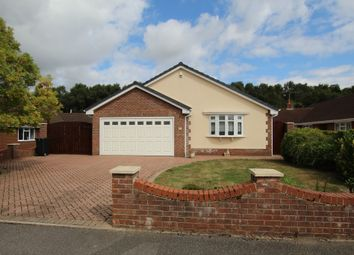 Thumbnail 3 bed detached bungalow for sale in Leeson Drive, Ferndown