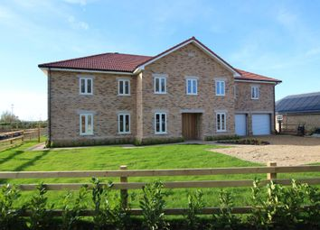 Thumbnail 5 bed detached house for sale in Old School Lane, Upware, Ely
