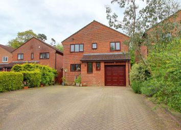 Thumbnail 4 bed detached house for sale in Hestia Close, Halterworth, Romsey