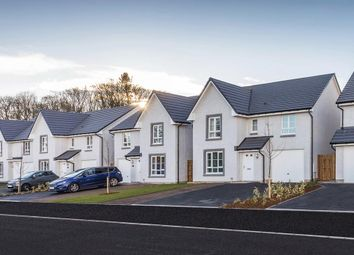 "Thumbnail 4 bedroom detached house for sale in ""Balmoral"" at Victoria Street, Monifieth, Dundee"