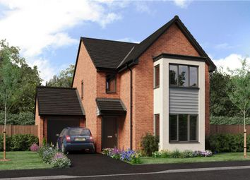 """Thumbnail 4 bed detached house for sale in """"The Esk"""" at Bristlecone, Sunderland"""