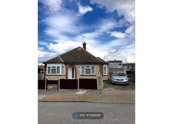 2 bed bungalow to rent in Balmoral Avenue, Stanford Le Hope SS17