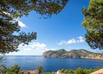 Thumbnail Land for sale in Camp De Mar, Andratx, Spain