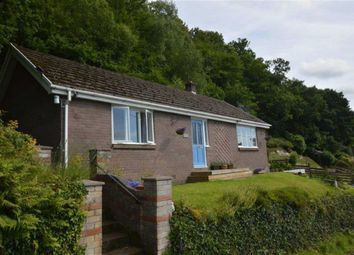 Thumbnail 2 bed detached bungalow for sale in Argraig, Brynheulog Lane, Eglwysfach, Powys