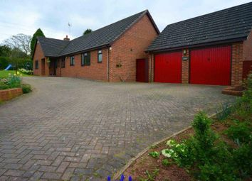 Thumbnail 4 bed detached bungalow for sale in Pontshill, Ross-On-Wye
