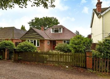 Thumbnail 3 bed detached bungalow for sale in Addiscombe Road, Crowthorne, Berkshire