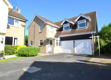 Thumbnail 4 bedroom detached house for sale in Holbrook Close, Great Waldingfield, Sudbury