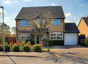 Thumbnail 4 bed detached house for sale in Barleycroft, Buntingford