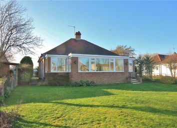 Thumbnail 2 bed detached bungalow to rent in Laleham Reach, Staines Upon Thames, Chertsey, Surrey