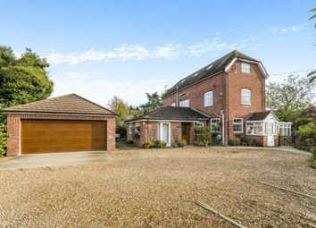 Thumbnail 6 bed detached house for sale in Cadnam, Southampton, Hampshire