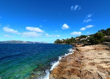 Thumbnail Land for sale in Spain, Mallorca, Alcúdia, Bonaire
