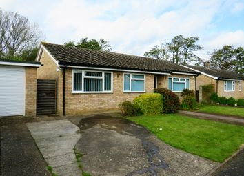 Thumbnail 3 bed bungalow to rent in The Lammas, Mundford, Thetford