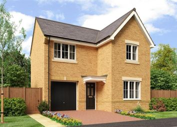 "Thumbnail 3 bedroom detached house for sale in ""The Tweed"" at Buttercup Gardens, Blyth"