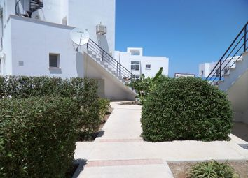 Thumbnail 1 bed apartment for sale in 2233, Catalkoy, Cyprus