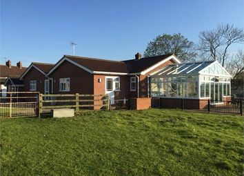 Thumbnail 5 bed detached bungalow for sale in Roman Road, Leeming, Northallerton, North Yorkshire