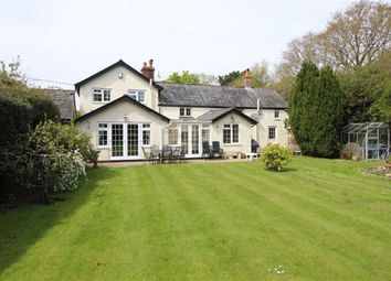 Thumbnail 5 bed detached house for sale in Bashley Common Road, Bashley, Hampshire