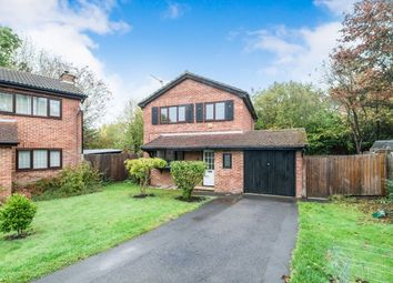 Thumbnail 3 bed detached house to rent in Minden Close, Chineham, Basingstoke